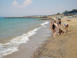 Тунис лечение псориаза